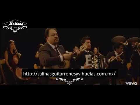 El Maestro Fernando de Santiago con su Vihuela SALINAS