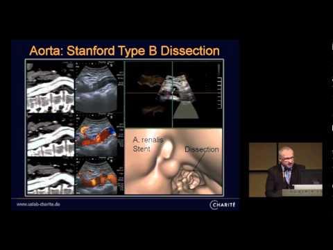 ECR 2012 - Dr Thomas Fischer