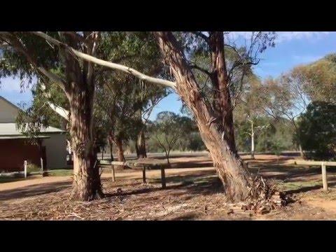 Burrumbuttock Public Hall - Burrumbuttock NSW
