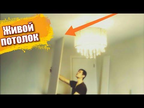 Живой потолок