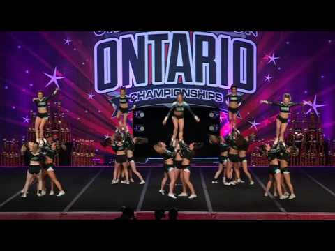 Cheer Sport Sharks Grey Reef Sharks Intl Open 6 Run 2