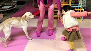 何かの番組で、ドッグ・ダンスなるモノの存在を知ったヒメちゃん。早速...