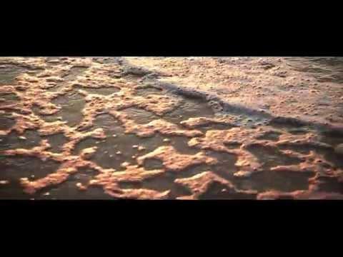 DJ Frankie Wilde – Freak. Слушать песню DJ Frankie Wilde w DJ Nick Hussey - Freak U (Da Hussla)