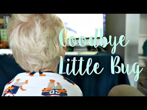 Saying Goodbye to Little Bug | Our Foster Care Journey