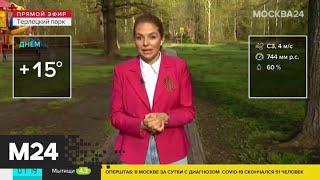 """""""Утро"""": теплая погода ожидается в столичном регионе 8 мая - Москва 24"""