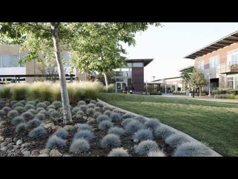 Francis Parker School - Centennial Video
