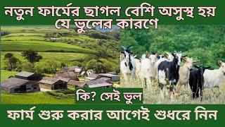 নতুন ফার্মে ছাগল বারবার অসুস্থ হয় কেন। কি? সেই ভুল ও তার সমাধান Solve the problem of goat farm।