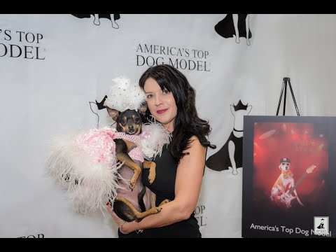 America's Top Dog Model (R) 'How to Get to the Top - Working the Red Carpet' Episode 1