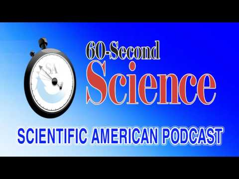 60S : Science & Life - Ep #35 : Clever Ants Have Backup Navigation Systems