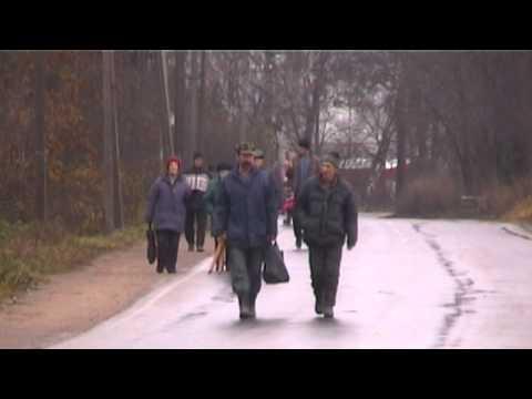 ленинградская облость луга знакомства