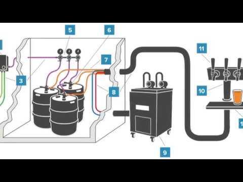 wiring diagram for keg beer wiring diagrams