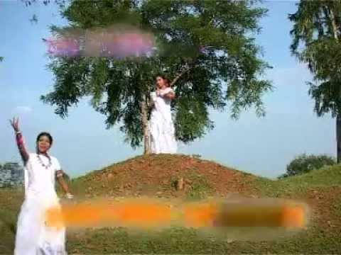 Gaadi Aau Baila Sajake - Satnam Charo Dharm - Bhagvati Tandeshwari - Chhattisgarhi Song