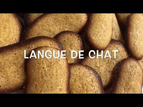 ♡ Langues de Chat ♡ - Clem Cook -