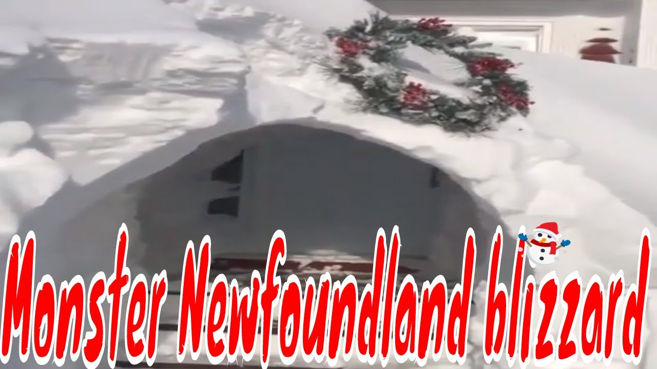 Armed Forces being mobilized to help Eastern Newfoundland dig out