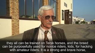 Игорь Львович Коган.  Комментарий о терской породе лошадей
