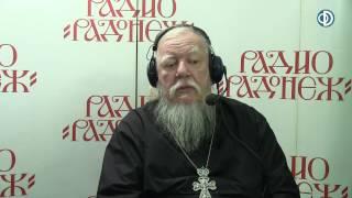 Радио «Радонеж». Протоиерей Димитрий Смирнов. Видеозапись прямого эфира от 2016.11.19