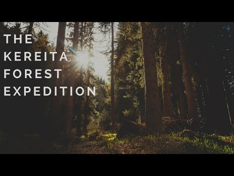 THE KEREITA FOREST EXPEDITION