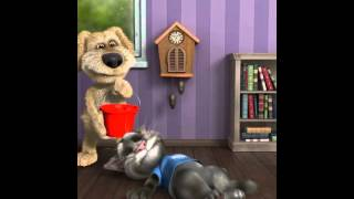 Talking Tom бокс