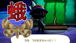 【あつ森】#6 蛾お兄さん、斧を得る【来るな!どうぶつの森】