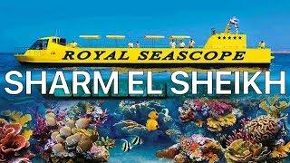 ШАРМ ЭЛЬ ШЕЙХ Перепутали экскурсии Экскурсия Батискаф Royal Sea Scope ЕГИПЕТ 2019 VLOG
