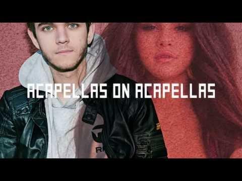 Zedd - I Want You To Know (ft. Selena Gomez) | ACAPELLA