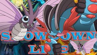 Pokemon Showdown Live ORAS #93 [Uu] - Ft PokeaimMD (Bug Buzz Off, Pest)