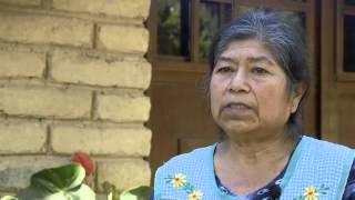Juguetes hechos con madera sostenible negocio verde para una población mexicana