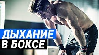 Дыхание в боксе  как правильно дышать боксеру на тренировках, техника дыхания в бою