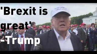 Donald Trump: Brexit a