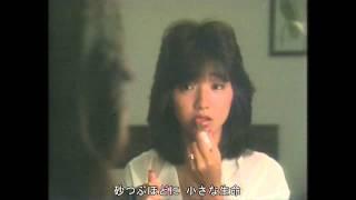 1984 『Angel's Dessert』 作詞:岡田冨美子 / 作曲:かまやつひろし ...