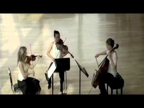 Trio Arkel