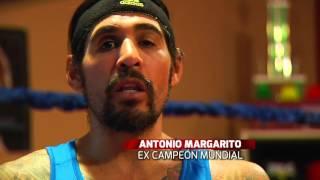 Antonio Margarito vuelve al ring