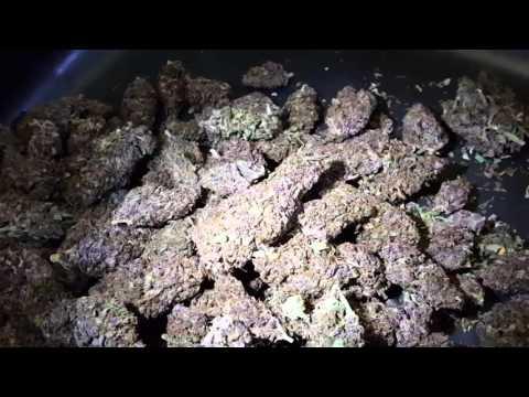New Record Set For Auto Dark Devil Marijuana? Plus How Dispensaries Work