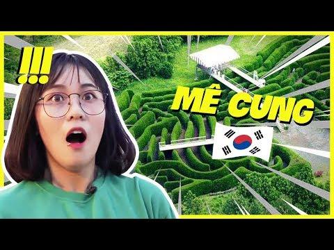 Lạc Vào Mê Cung Đỉnh Nhất Hàn Quốc. Misthy Có Cái Kết Thảm || Thy ơi, Mày đi đâu Thế!