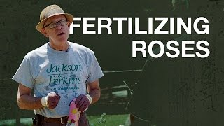 Fertilizing Roses with Paul Zimmerman