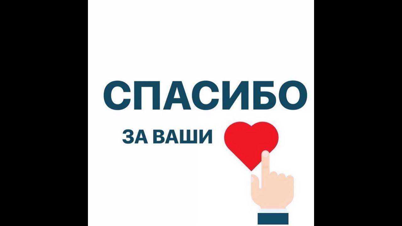 Метис западно сибирской лайки фото разных сферах