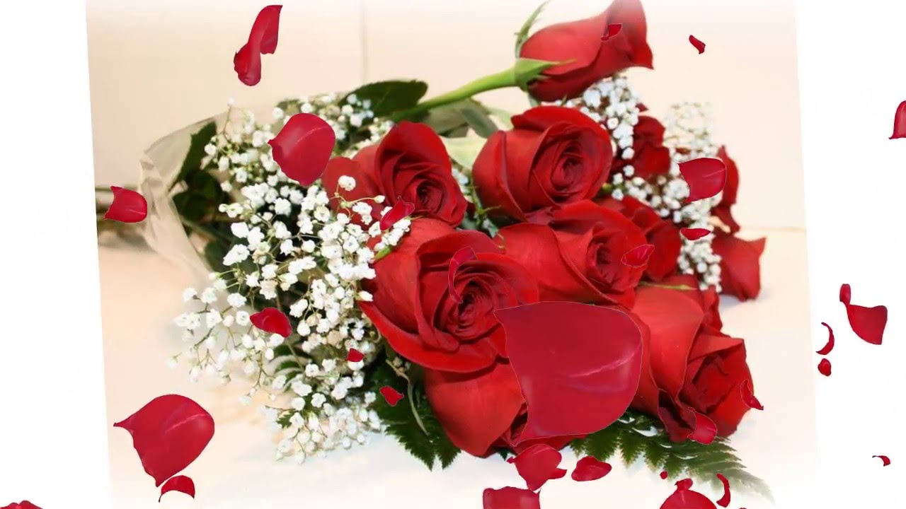 najljepše čestitke za dan žena Sretan 8. Mart, dan žena ❤   YouTube najljepše čestitke za dan žena