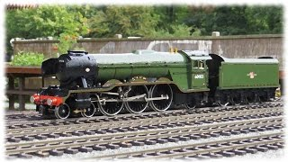 accucraft a3 flying scotsman in br livery at buckfastleigh august 2015