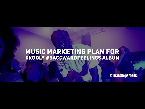 Music Marketing Plan For Skooly Baccward Feelings Album