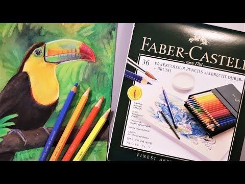 faber-castell-albrecht-dürer-watercolour-pencil-review-&-demo