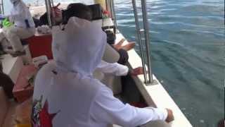 2012 馬來西亞山打根釣魚 Malaysia Sandakan fishing