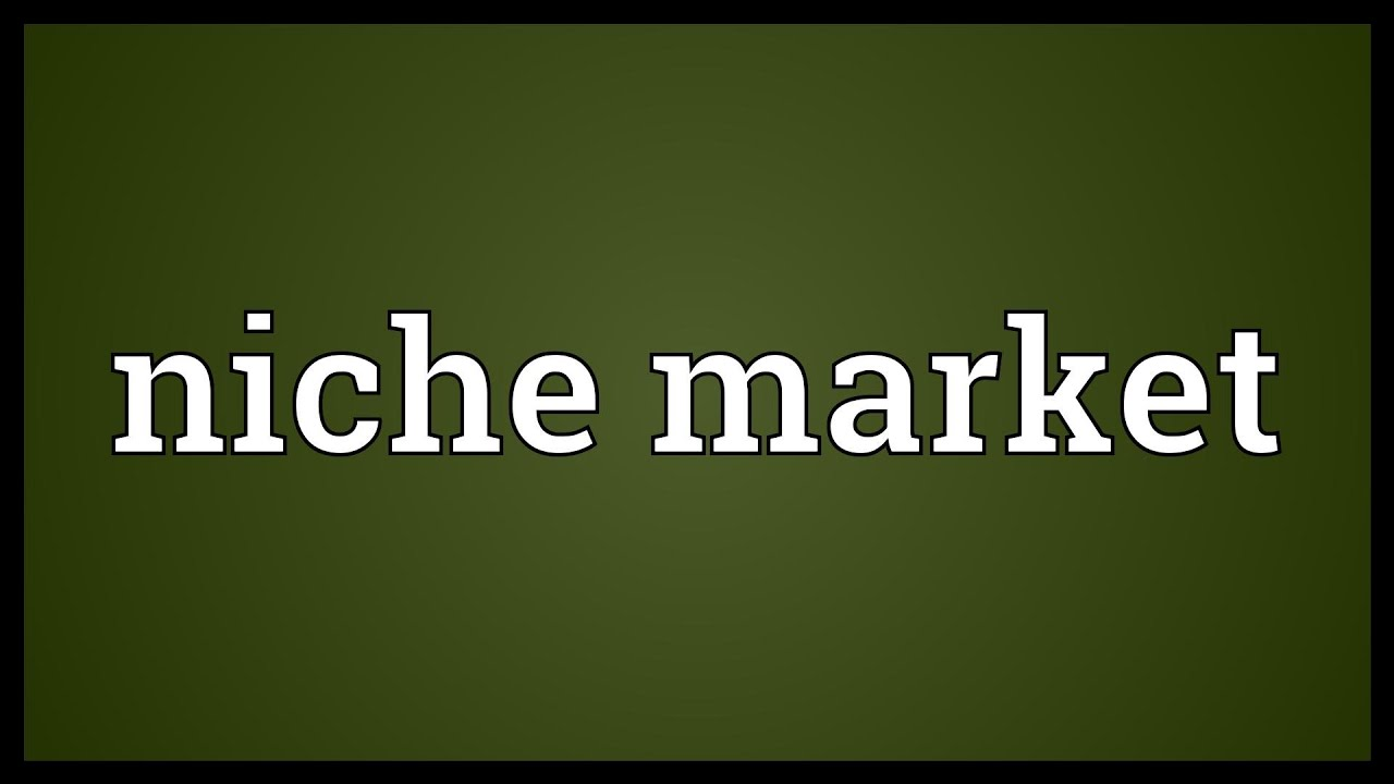 Niche market Meaning - YouTube.