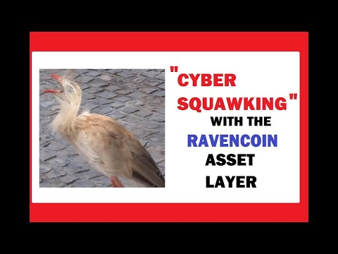 """RavenCoin """"Cyber Squawking"""" of Asset Names"""
