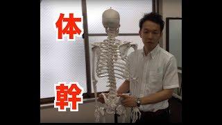 【TAP UP TV】Vol.31 唐澤 幹男先生「多裂筋の促通方法」