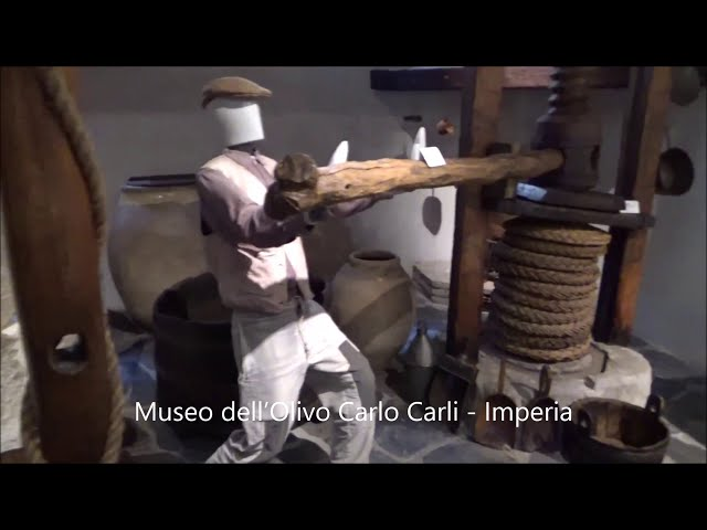 Museo dell'Olivo Carli - Imperia