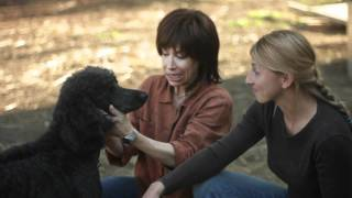 A day at the rescue ranch: Animal chiropractic care with Dr. Sherry Gaber