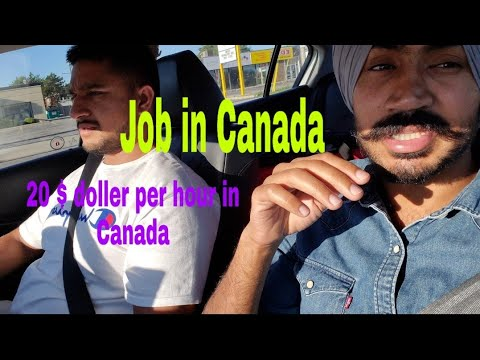Work In Canada Windsor | 20 To 25 $ Per Hour | International Students | St Clair College