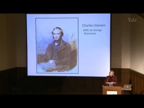 "Becoming Darwin: History, Memory, and Biography, ""Icon"""
