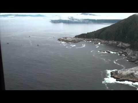 Southeast Alaska - Aerial surveys - Dall Island