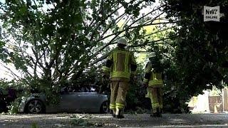 "Delmenhorst: Orkan ""Sebastian"" sorgt für Dauereinsatz der Feuerwehren"